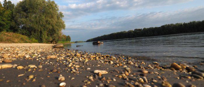 Abendstimmung an der Donau bei Zwentendorf